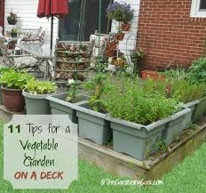 Deck Garden Ideas 11 Tips For Growing A Vegetable Garden On A Deck The Gardening