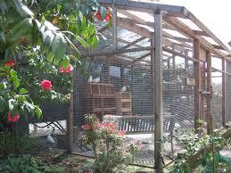pigeon aviary pigeons pinterest bird aviary and bird