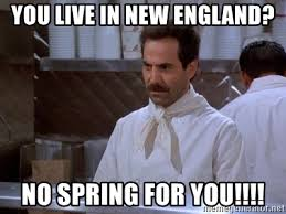 New England Memes - you live in new england no spring for you soup nazi meme