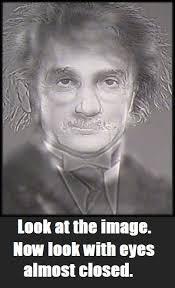 Albert Einstein Meme - albert einstein or harry potter