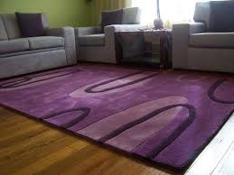 Modern Purple Rugs Modern Purple Area Rug In Living Room My House Pinterest