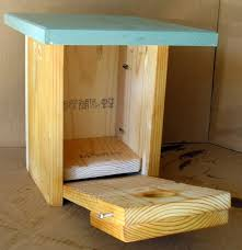 Free Woodworking Plans For Beginners by 10 Best Bird Houses Images On Pinterest Bird Houses Blue Bird