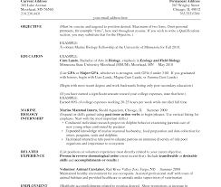 Resume Sle India Pdf science resume teachers templates slesrmatr