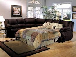 Sofa Sectional Sleepers Sectional Sofa With Recliner And Sleeper Catosfera Net