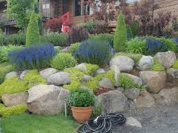 Rock Garden Ideas Best Large Rock Landscaping Ideas Rock Garden Inspiration Ideas