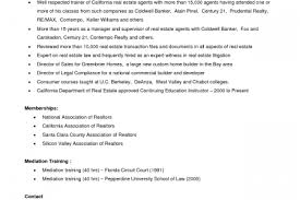 Real Estate Agent Resume Examples by Real Estate Salesperson Resume Sample Reentrycorps