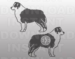 commercials with australian shepherds australian shepard etsy