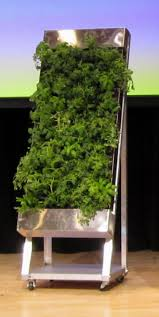 herb wall 19 best herbs images on pinterest gardening herb wall and urban