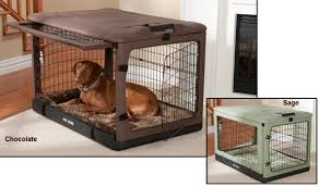 the other door crate with bolster pad dog travel crates