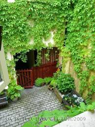 courtyard garden design ideas pictures exhort me courtyard garden design ideas pictures exhort me