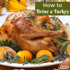 how to brine a turkey savory experiments