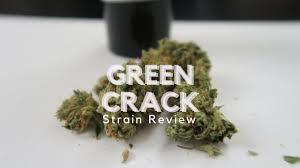 wedding cake leafly green strain review ismoke