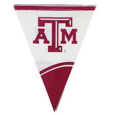 Triangle Flag Case Creative Converting 290848 106