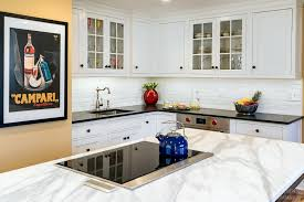 induction cooktop the kitchen company