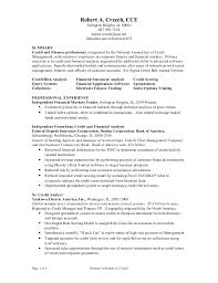Credit Analyst Resume Objective Financial Analyst Resume Financial Analyst Resume Template