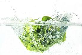 tips for cleaning and storing lettuce