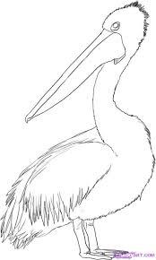 how to draw australia free download clip art free clip art