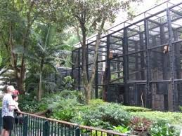Hong Kong Zoological And Botanical Gardens Panel Urges Major Rev Of Hong Kong Zoological And Botanical