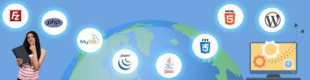Java Web Developer Resume Sample by Mysql Developer Resume
