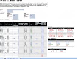Workout Excel Template Fitness Tracker Excel Template Excel Fitness Tracker