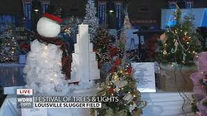 the festival of trees lights help kick the season