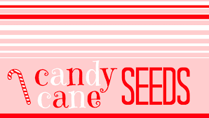 candy cane seeds printables a and a glue gun
