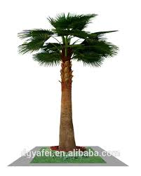 date palm trees date palm trees suppliers and manufacturers at