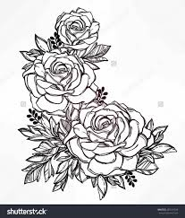 rose coloring pages border contegri com