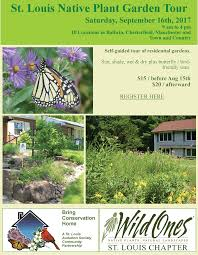 native plant seeds for sale blog wild ones u2013 st louis chapter promoting landscaping with