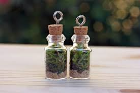 mini terrarium necklaces