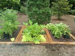 herb garden kitchen best herb garden design ideas and plans
