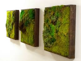 green wall decor moss walls the newest trend in biophilic interiors moss wall