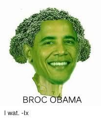 Memes Wat - 25 best memes about broc obama broc obama memes