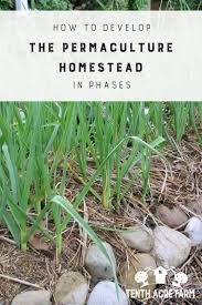 How Does An Outdoor Faucet Work Homesteady How To Develop The Permaculture Homestead In Phases Tenth Acre Farm