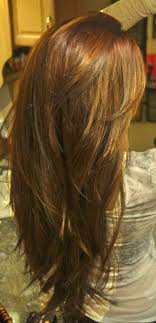 hair with shag back view layered haircut for thick hair