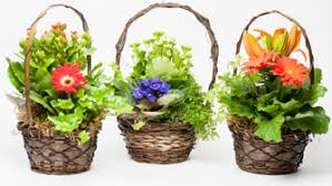 hospital gift basket gift shop and retail northwest hospital center