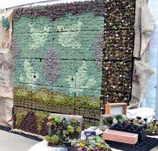 37 best succulent gardens images on pinterest succulents garden