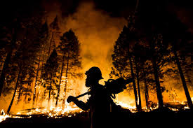 Canada Wildfire Minneapolis by Video Leaders Give Career Advancement Advice For Women Business