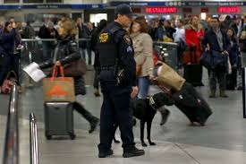New York travel security images Amid u s global travel alert obama assures americans they can jpg