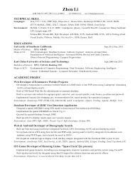 Ssrs Developer Resume Customer Serviceticketing Agent Resume Essays About Martin Luther