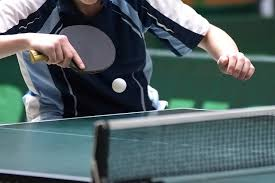 table tennis and ping pong the salary of a professional ping pong player sapling com