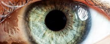 What Causes Blindness In Humans Scientists Are Using Gene Editing To Repair A Mutation That Causes