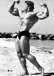 arnold schwarzenegger age height weight images bio