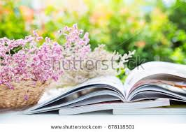 Drying Flowers In Books - view open bible on altar flowers stock photo 3190149 shutterstock
