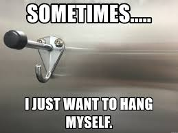 Bathroom Stall Meme - sometimes i just want to hang myself bathroom stall hanger