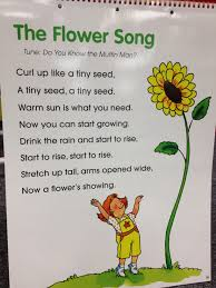 flower garden games online the flower song science life cycles pinterest songs rain