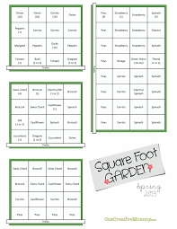 square foot vegetable garden layout square foot vegetable garden layout home design and decorating