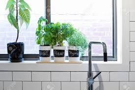 kitchen ideas indoor herb garden kit modern kitchen window window