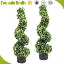types of ornamental plants types of ornamental plants suppliers