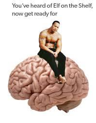 Neuroscience Meme - neuroscience memes science technology engineering 85 photos